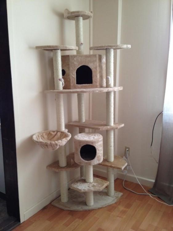 Уверен, мой кот будет в восторге от нового замка (2 фото)