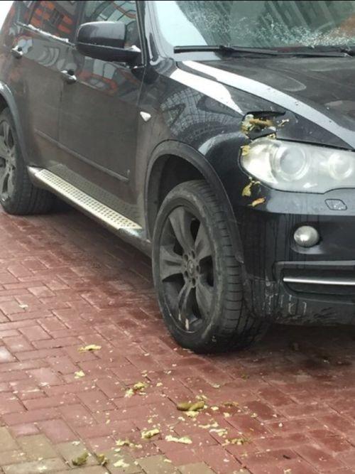 Водителя BMX X5 наказали солеными огурцами (3 фото)