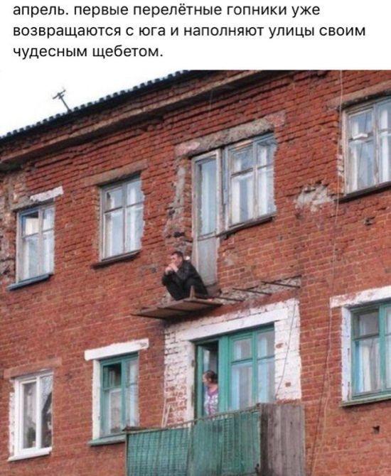 Подборка прикольных фото  (106 фото)