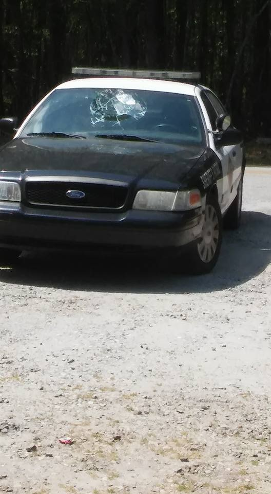 Хулиганство на крыше автомобиля шерифа (5 фото)