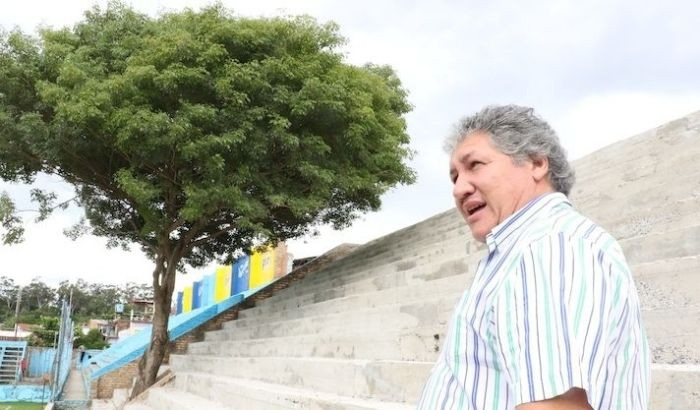 Трибуну построили вокруг растущего на стадионе дерева (4 фото)