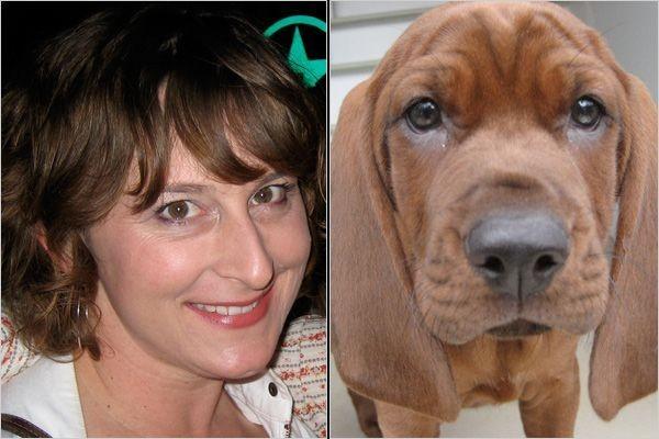 Собаки похожи на своих владельцев (38 фото)