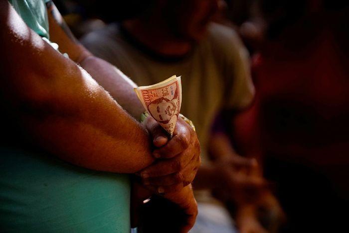 Петушиные бои на Кубе (13 фото)