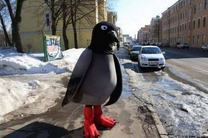 Фото, которые возможно было сделать только в России (38 фото)