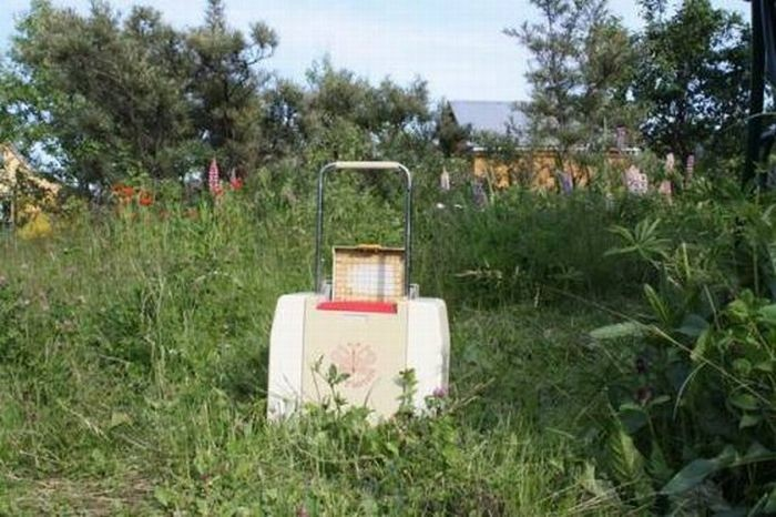 Что это за чемодан? (10 фото)