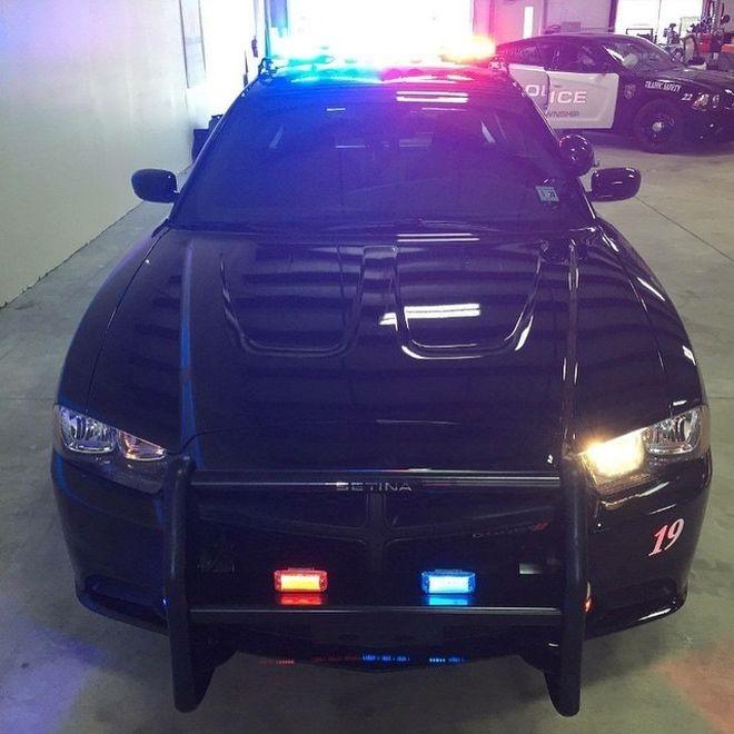 Где делают полицейские автомобили в CША (19 фото)