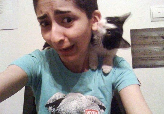 Животные против женщин (22 фото)