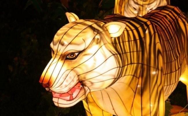 Китайский фестиваль светящихся фигур (43 фото)