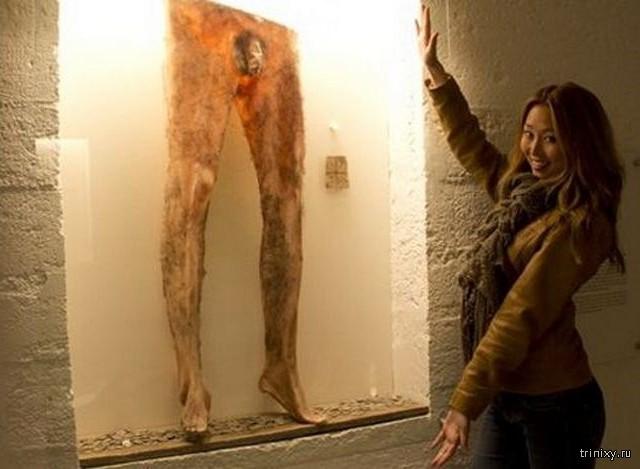 Шокирующие изделия из человеческой кожи (7 фото)