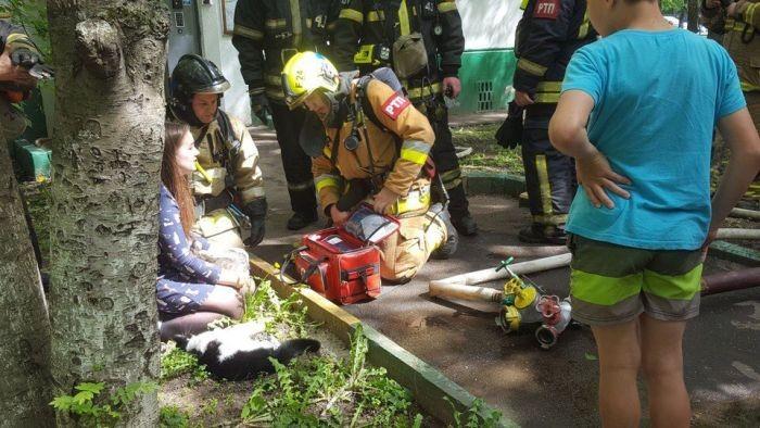 Пожарные спасли животных (4 фото)