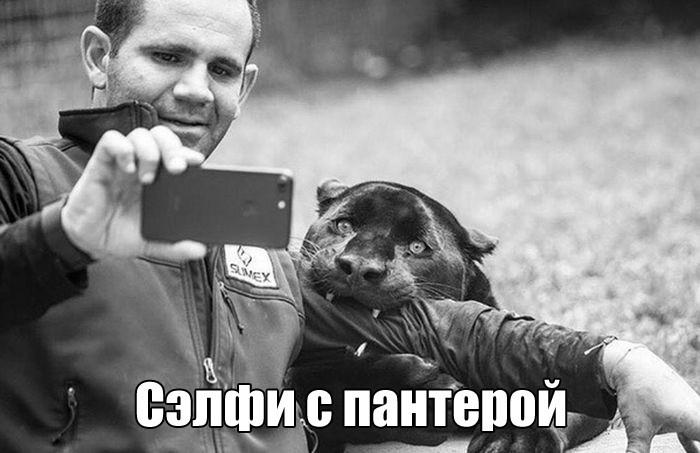 Подборка прикольных фото  (71 фото)