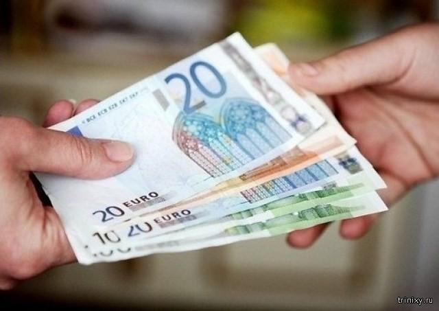 Какие вредители живут на денежных купюрах (6 фото)