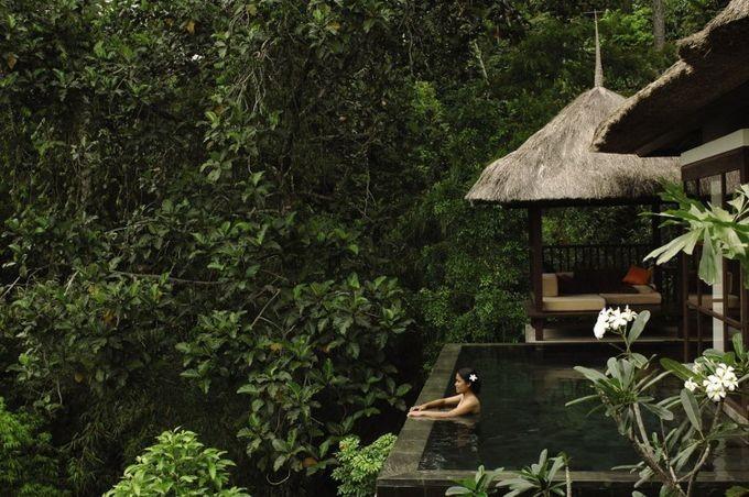 Отель Ubud Hanging Gardens на Бали (13 фото)