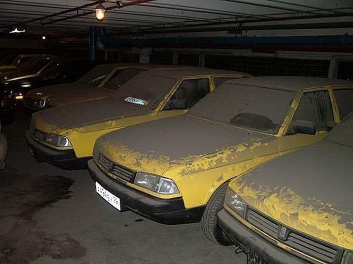 Массовая находка законсервированных «Москвичей» (5 фото)