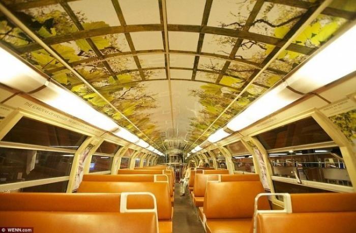 Поезд с сюрпризом (14 фото)