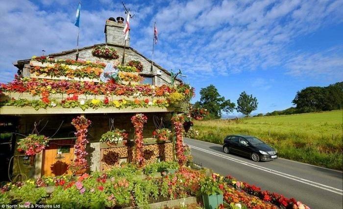 Дом из цветов (4 фото)