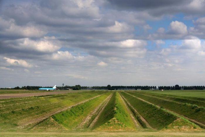 Борьба с шумом в аэропорту Схипхол в Нидерландах (7 фото)
