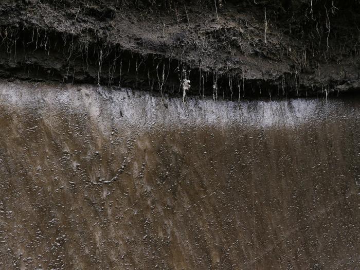 Нелегальная добыча бивней мамонта (40 фото)