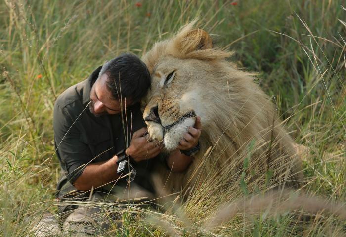 Фотографии животных разных стран (22 фото)