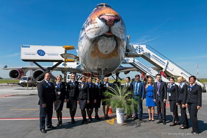 Boeing-747 в тигриной ливрее (20 фото)