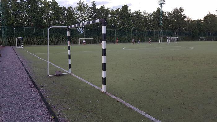 Спортивные объекты МГУ (29 фото)