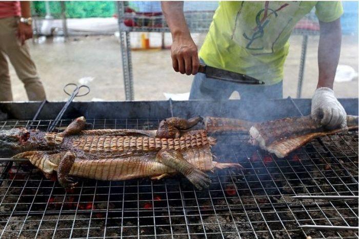 Крокодилы-гриль - одно из китайских блюд для гурманов (4 фото)