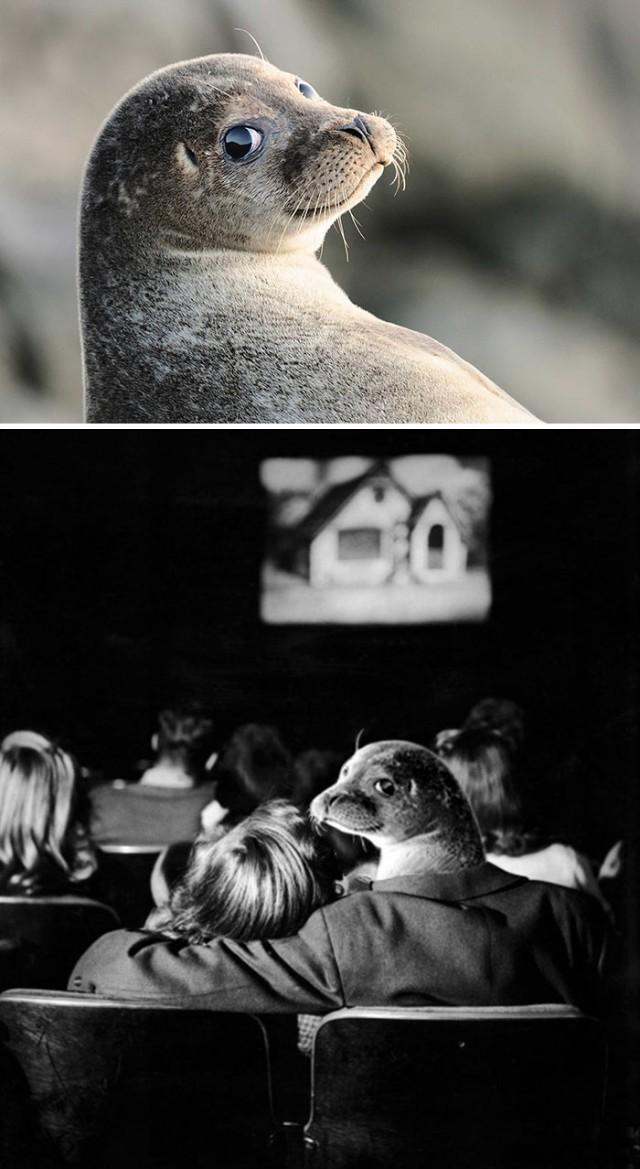 Много-много картинок от мастеров фотошопа (49 фото)