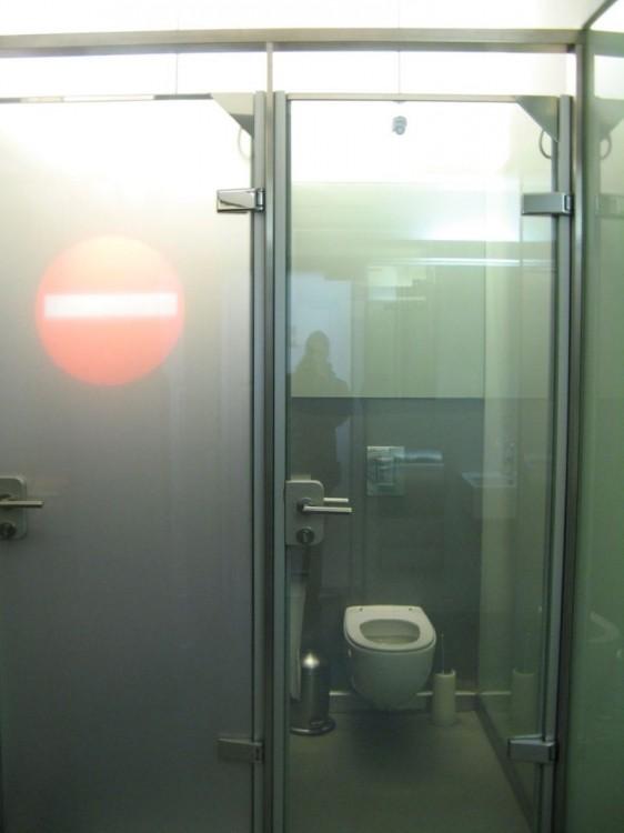 Прозрачная дверь в туалет (2 фото)
