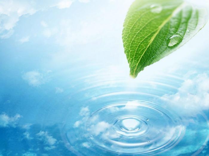 Почему постоянно следует пить воду, начиная прямо сейчас (3 фото)