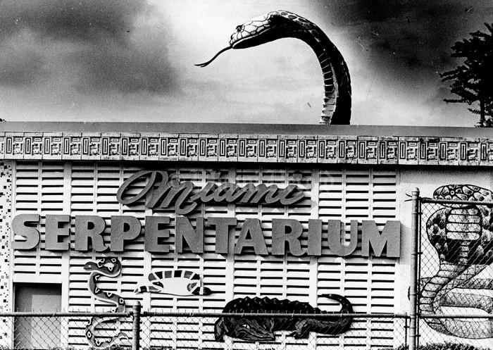 История жизни американца, перенесшего более 170 укусов змей (9 фото)