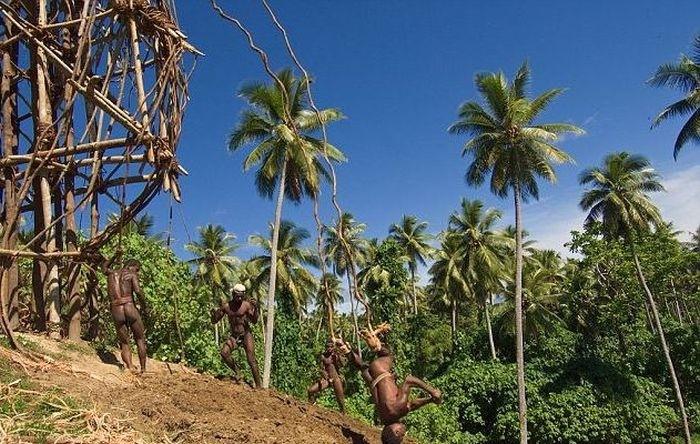 Аборигены острова Вануату ныряют в землю (18 фото)