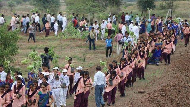 Мировой рекорд: в Индии за 12 часов посадили 66 млн деревьев (4 фото)