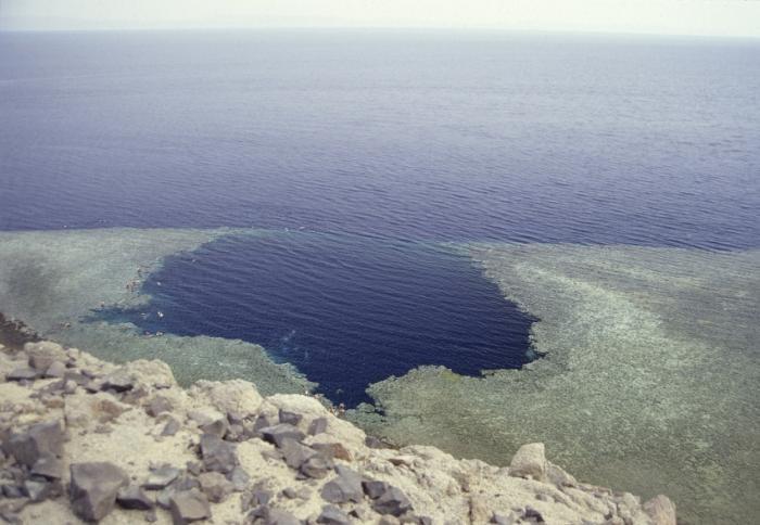 Подводное кладбище (7 фото)