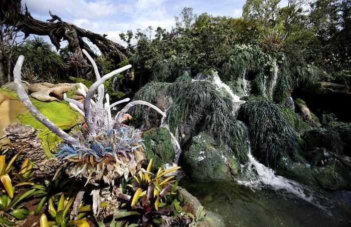 Тематический парк Pandora World of Avatar land в Disney World (20 фото)