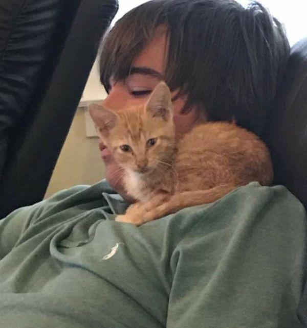 История спасения котенка (5 фото)