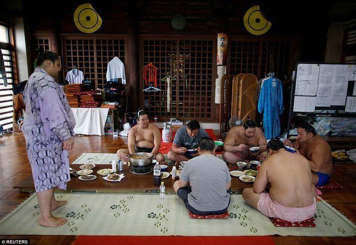 8000 калорий в день и кислородные маски: как живут борцы сумо (13 фото)