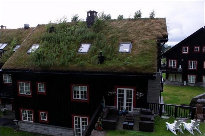 Норвежские крыши (12 фото)