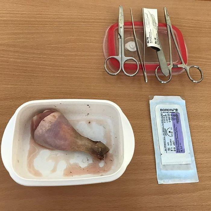Будни студента-стоматолога (17 фото)