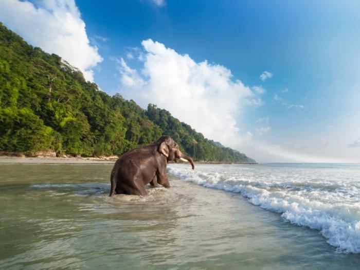 Идеальные места для пляжного отдыха в Азии (12 фото)