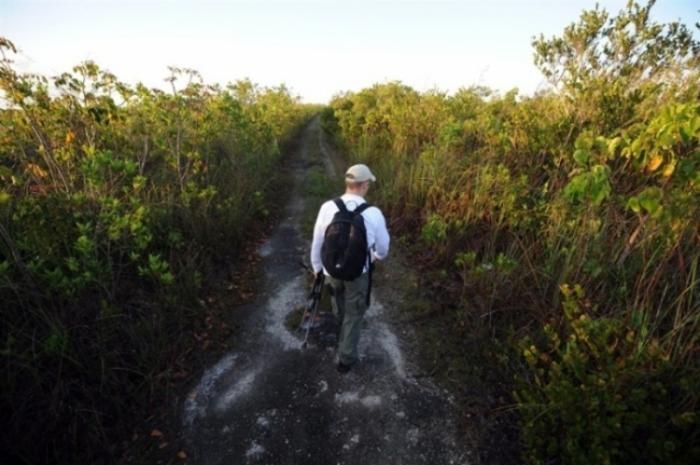 Охотник на питонов из Флориды (7 фото)