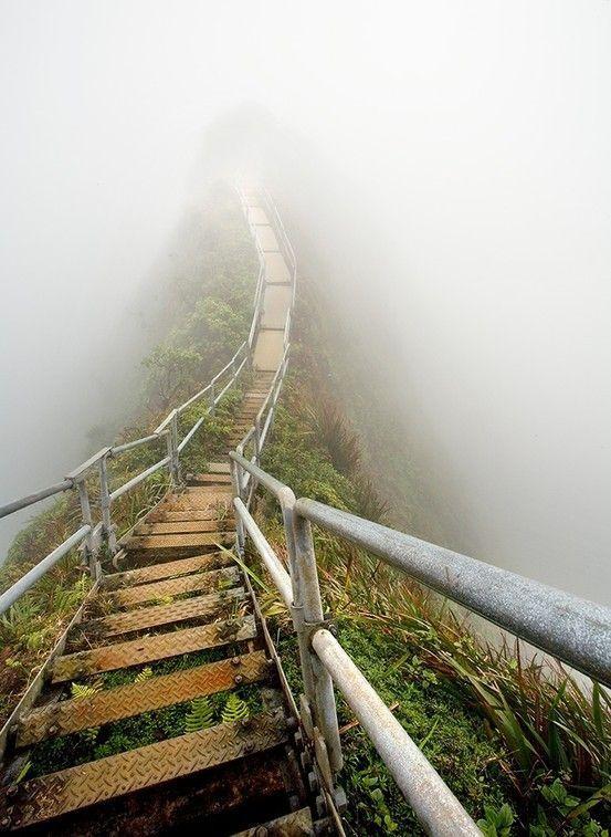 Лестница в небо (17 фото)