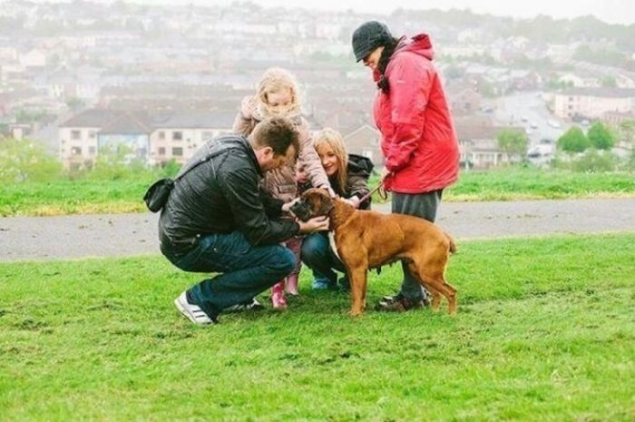 Спасение брошенной собаки (7 фото)