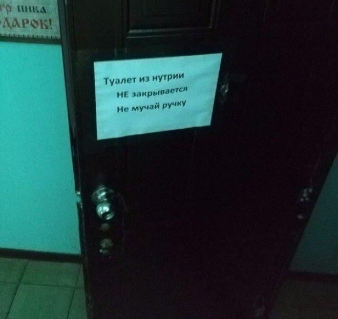 Уморительные грамматические ошибки (15 фото)