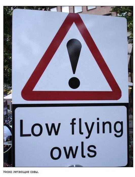 Необычные дорожные знаки и указатели (38 фото)