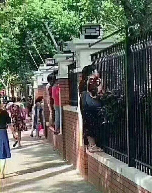 Родители в первый день детей в детском саду (10 фото)