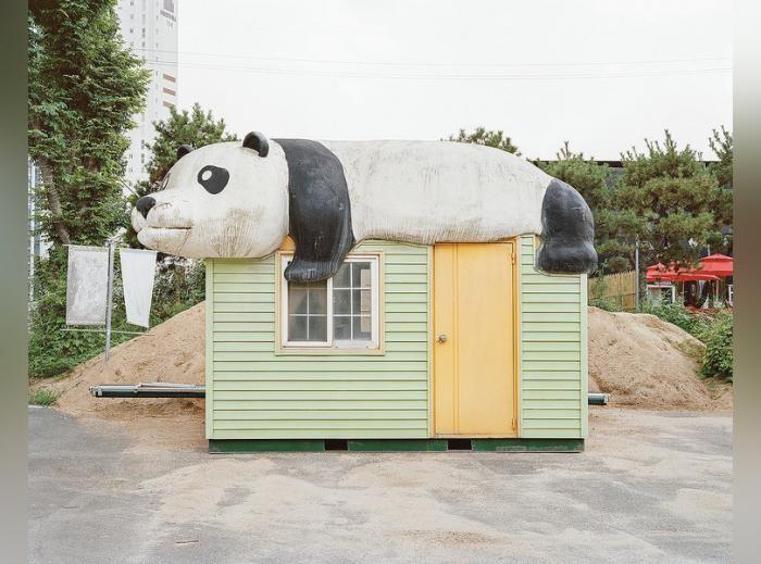 Досуг жителей Южной Кореи (13 фото)
