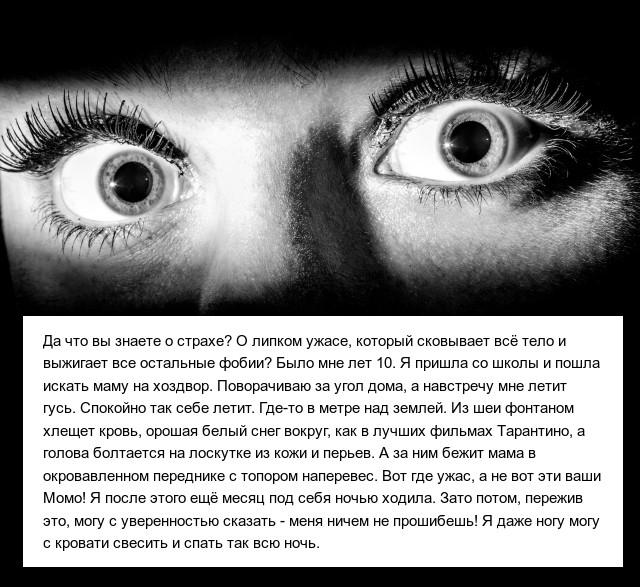 Истории пользователей социальных сетей (10 фото)
