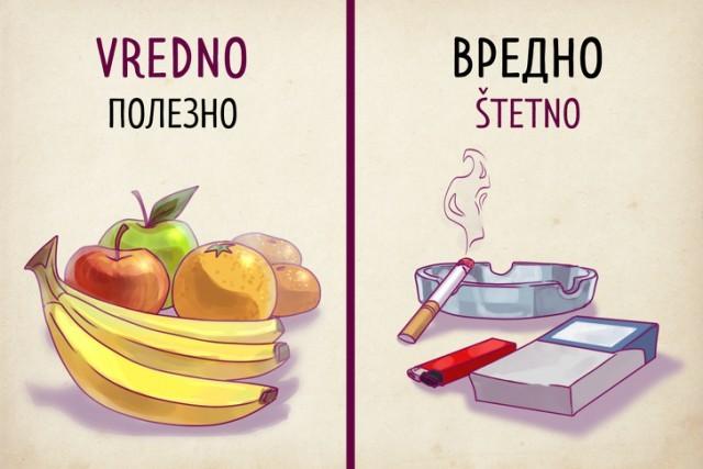 Почему сербский язык способен удивить русского туриста (19 картинок)