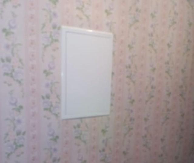 Страж электросчетчика (4 фото)