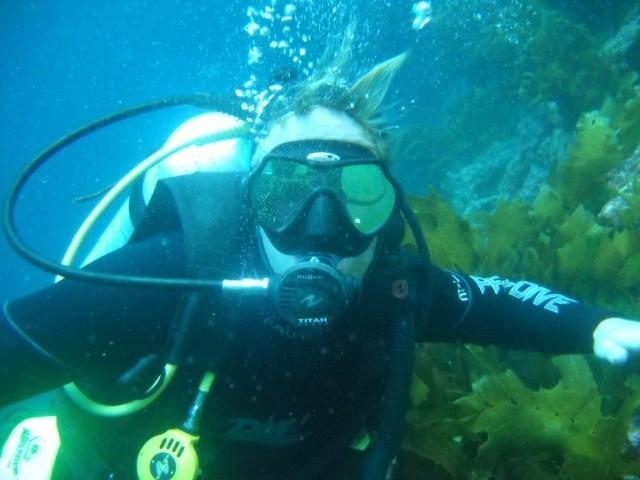На Багамах дайвер заснял на видео, как на него напала акула (3 фото)